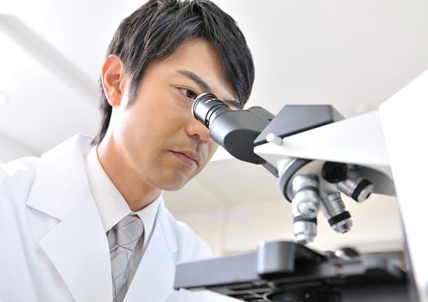 食品業界:大阪×理系技術職の求人特集