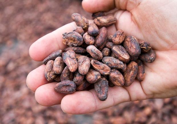 食品業界:輸入営業の求人特集